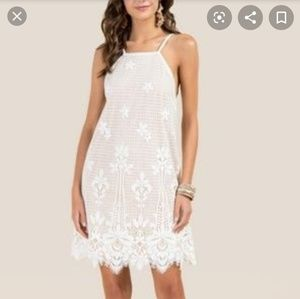 Francesca's Bridal Party White Lace Nude MiniDress